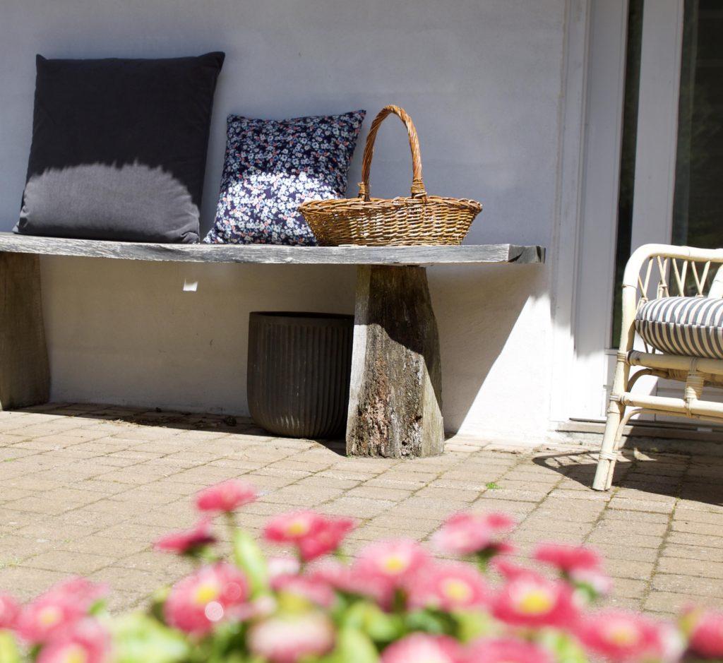 sommerhus idyl med vesterhavet i baggrunden lehof